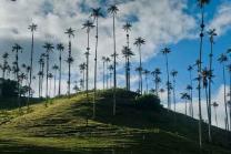 Colambiya valley of cocora