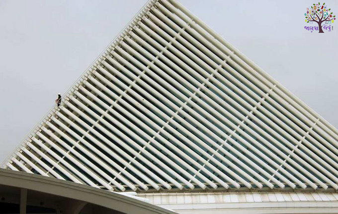 Photos: The strange-poor Shingles in various locations around the world