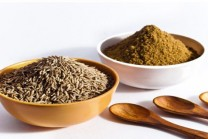 One teaspoon cumin seed consumed three times reduces weight