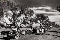 1947માં ભારત-પાકિસ્તાનના ભાગલાની દુર્લભ તસવીરો, અચૂક શેર કરો
