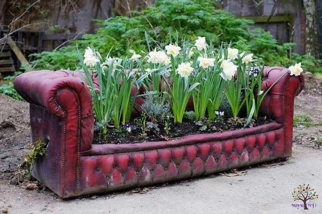 The world's exotic gardens, boasts a mystery, social media hit