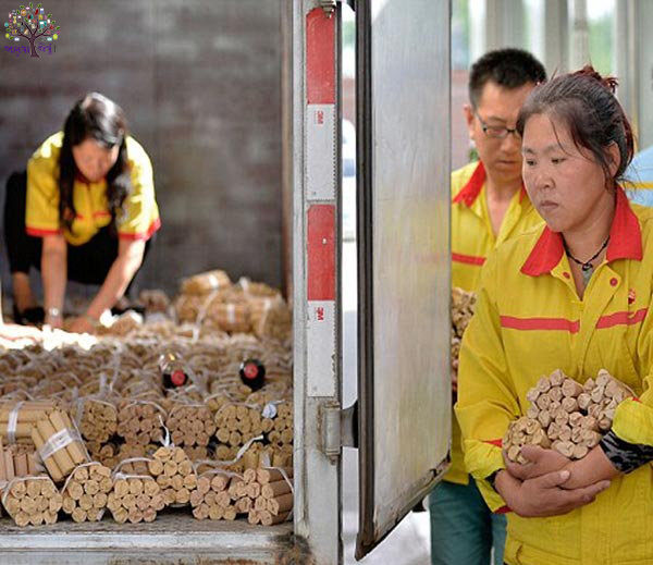 4 tons of coins to buy a car by taking out Chinese, give 2,000 pound note