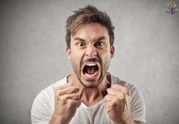 ગુસ્સામાં ક્યારેય ન કરો આ કામ, બગાડી શકે છે તમારા અન્ય કામોને