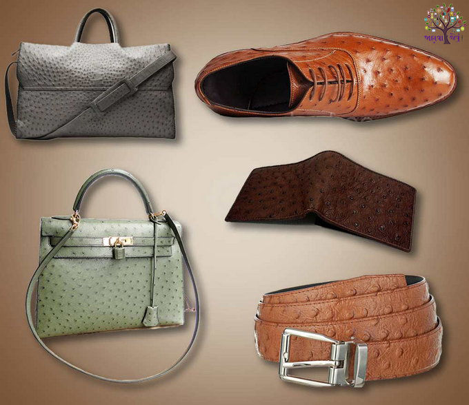 Crocodile is made from snake skin, the Luxury Products
