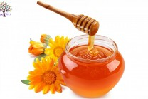How to recognize genuine and fake honey