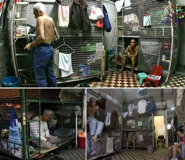 Hong Kong people live in cages like animals in a cage, Rs. 11,000