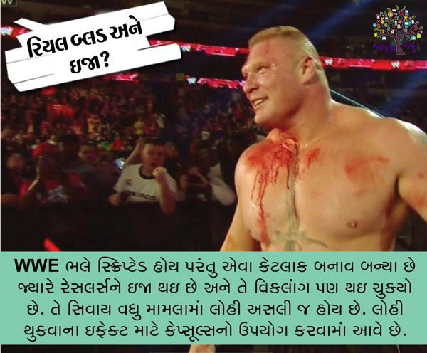 WWE wrestlemania dangerous about 5 question, the answer you want to learn