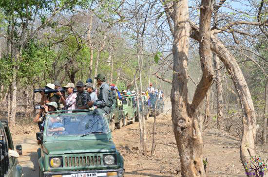 Gir Gujaratis enjoying a fun vacation: many peoples  tourists turned in ghumi