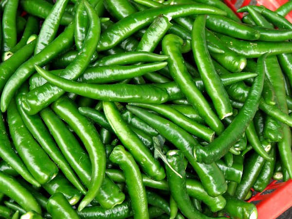 Incredible benefits of indian green chillies | Janvajevu.com