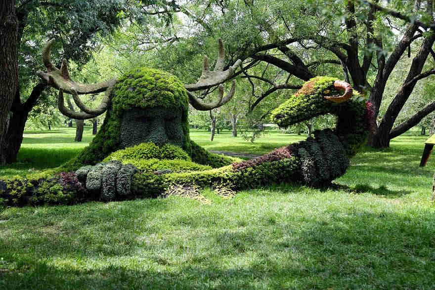 Amazing grass garden pictures | Janvajevu.com