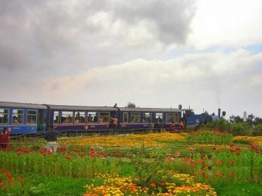 ધરતીનું સ્વર્ગ છે ભારતનું આ શહેર, એકવાર અવશ્ય જવું