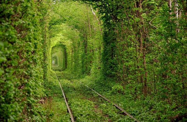 Tunnel-of-Love-in-Ukraine-1