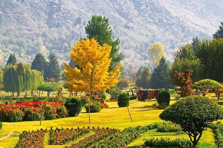 Azad Kashmir & jummu Kashmir Nature (6)