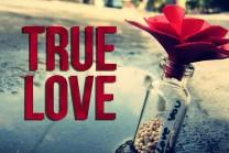આ છે સાચા પ્રેમની વ્યાખ્યા…