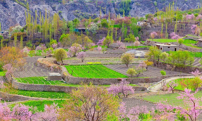 Hunza valley 1