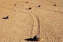અહી આપમેળે જ પથ્થરો એક જગ્યાથી બીજી જગ્યાએ ખસે છે, નાસા માટે પણ હજુ એક રાજ છે!