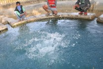 ચમત્કાર!! આ કુંડમાં તાળી પાડતા જ નીકળે છે ઉકળતું ગરમ પાણી