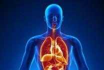 માનવ શરીર સાથે જોડાયેલ Interesting વાતો….