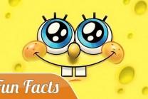 શું તમે જાણો છો આ Fun Facts…. ?