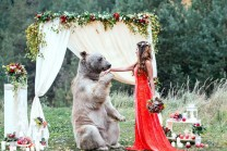 અરે વાહ!! લગ્નમાં રીંછે કરી અંગુઠી પહેરાવવામાં મદદ અને દુલ્હનને કરી Kiss!!