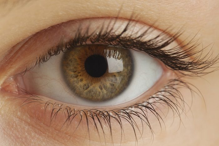 બધાને રંગીન દુનિયા બતાવતી આંખ વિષે જાણવા જેવું