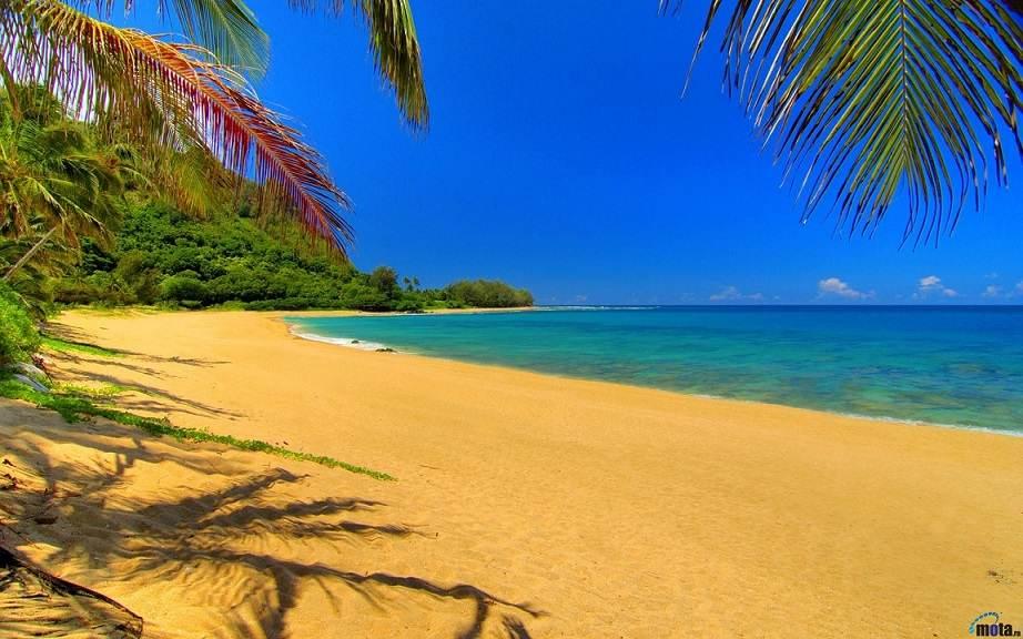 392252-hawaii-beach-best-vacation
