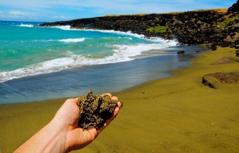green sand beach french guiana