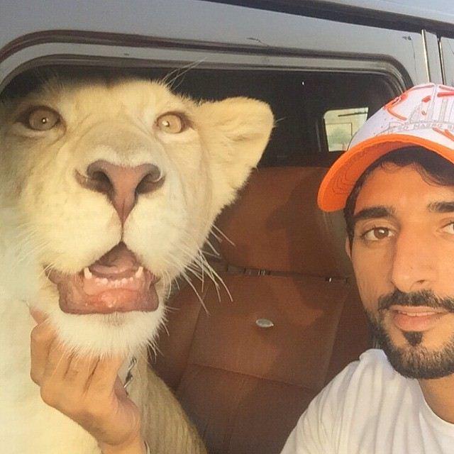 Prince-of-Dubai-Faz3-0601201614