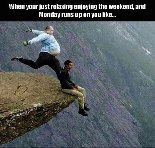 Funny-Pictures-Sunday-3-500x477