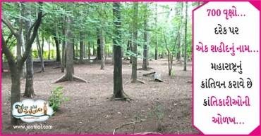 જાણો કેવીરીતે થઇ આ વન બનાવવાની શરૂઆત, સલામ છે આ વ્યક્તિને…