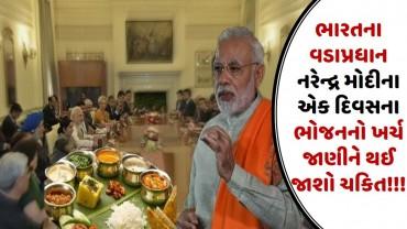 ભારતના વડાપ્રધાન નરેન્દ્ર મોદીના એક દિવસના ભોજનનો ખર્ચ જાણીને થઈ જાશો ચકિત!!!