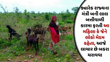 ક્યારેક રાજ્યના મંત્રી બની લાલ બત્તીવાળી કારમા ફરતી આ મહિલા કે જેને લોકો મેડમ કહેતા, આજે લાચાર છે બકરા ચરાવવા