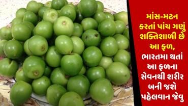 માંસ-મટન કરતાં પાંચ ગણું શક્તિશાળી છે આ ફળ, ભારતમા થતાં આ ફળના સેવનથી શરીર બની જશે પહેલવાન જેવુ