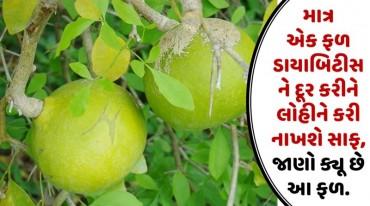 માત્ર એક ફળ ડાયાબિટીસને દૂર કરીને લોહીને કરી નાખશે સાફ, જાણો ક્યૂ છે આ ફળ.