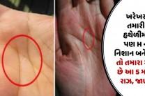 ખરેખર તમારી હથેળીમાં પણ H નુ નિશાન બને છે? તો તમારા માટે છે આ 5 મોટા રાઝ, જાણો