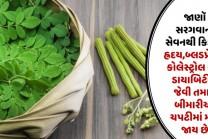 જાણૉ સરગવાના સેવનથી કિડની, હ્રદય, બ્લડપ્રેશર, કોલેસ્ટ્રોલ અને ડાયાબિટીસ જેવી તમામ બીમારીઓ ચપટીમાં મટી જાય છે