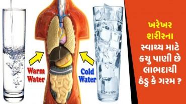 ખરેખર શરીરના સ્વાથ્ય માટે કયુ પાણી છે લાભદાયી ઠંડુ કે ગરમ ?