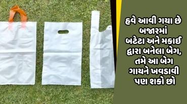 હવે આવી ગયા છે બજારમાં બટેટા અને મકાઈ દ્વારા બનેલા બેગ, તમે આ બેગ ગાયને ખવડાવી પણ શકો છો
