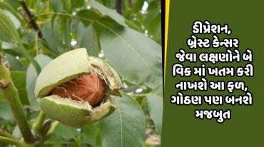 ડીપ્રેશન, બ્રેસ્ટ કેન્સર જેવા લક્ષણોને બે વિક માં ખતમ કરી નાખશે આ ફળ, ગોઠણ પણ બનશે મજબુત