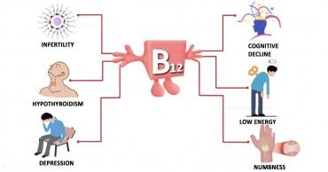 શું તમારા લોહીમાં વિટામીન બી12 ની ઉણપ છે? એક સાદો ઉપાય પણ જબરદસ્ત રીઝલ્ટ.