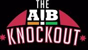 સલમાને AIBની ટીમને 'ભઠ્ઠીમાં શેકી નાખવાની' ધમકી આપી હતી