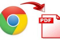 કોઇપણ Web page ને PDF ફાઈલમાં કેવી રીતે બદલાય?