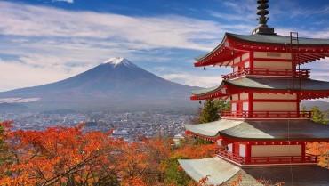 જાપાનમાં લિંગ અને પ્રજનન ક્ષમતા પર ઉત્સવ આયોજિત કરવામાં આવે છે, જાણો અન્ય વાતો