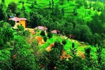 પર્વતોથી ઘેરાયેલ અને ભારતનું સ્વીત્ઝરલૅન્ડ 'કૌસાની' છે બેહદ સુંદર