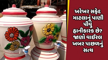 ખરેખર સફેદ માટલાનું પાણી પીવું હાનીકારક છે? જાણો વાઈરલ ખબર પાછળનું સત્ય